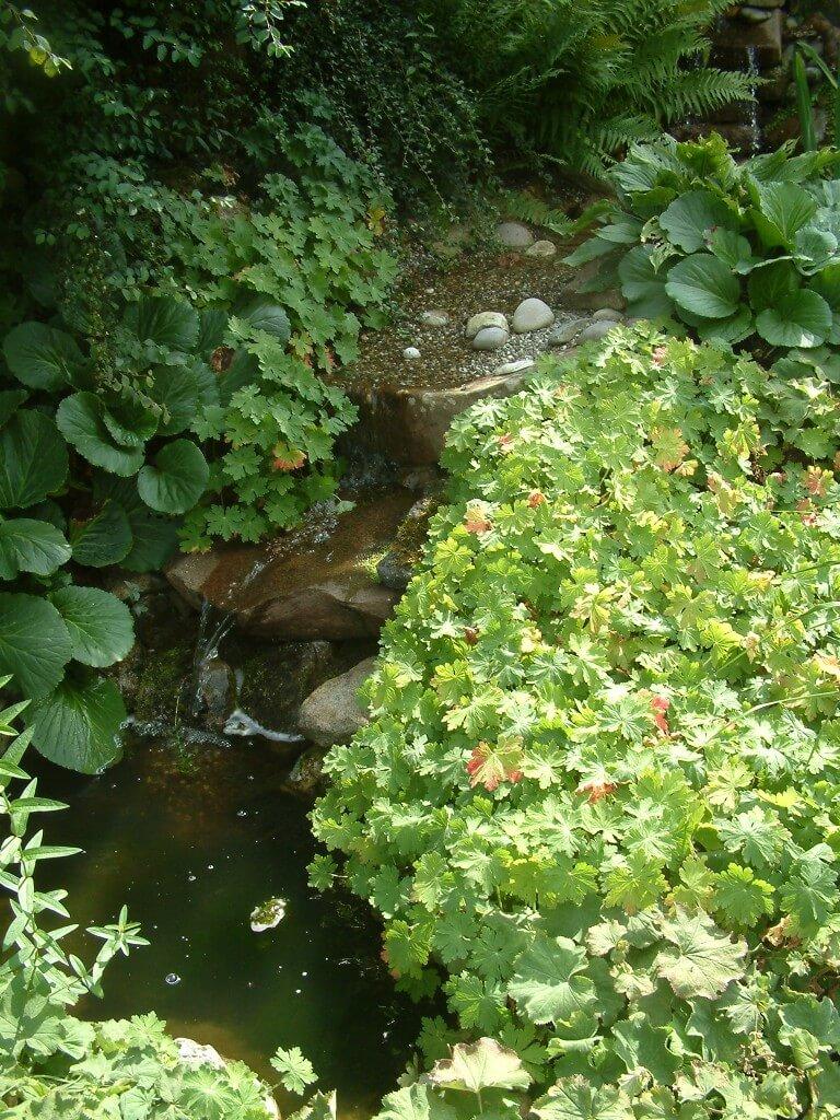 Wasser im Garten wirkt gemütlich: Gartenteich Würzburg